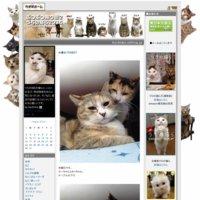 ぶつぶつ独り言2(うちの猫ら2015)